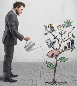 Путь мелкого инвестора
